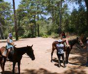 raduga at safari 180x152 - Прогулка на лошадях