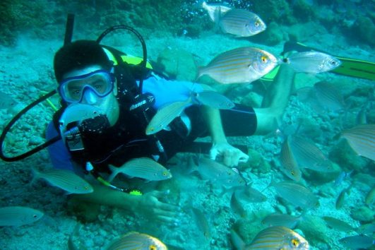raduga diving tour 6 1 531x354 - Дайвинг