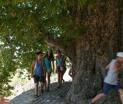raduga tour safari2 180x152 - Джип-Сафари